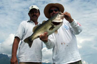 Mazatlan Bass Fishing