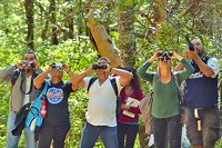 Mazatlan Hiking & Birdwatching